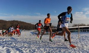 19th SPAR European Cross Country Championships